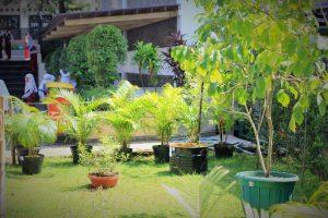 GreenHouse (2)